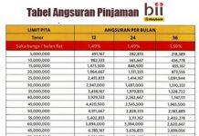 Tabel Kredit Pinjaman Bank BII 2016
