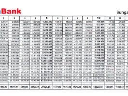 Tabel Angsuran KPR Bank Panin Terbaru 2019